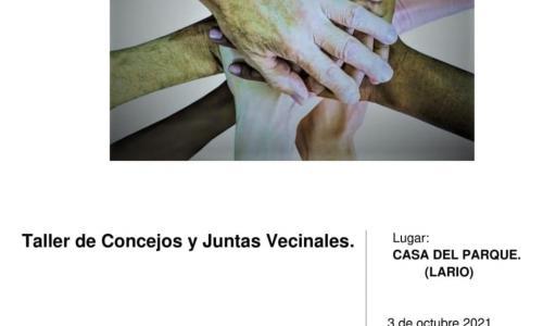Taller de Concejos y Juntas Vecinales.
