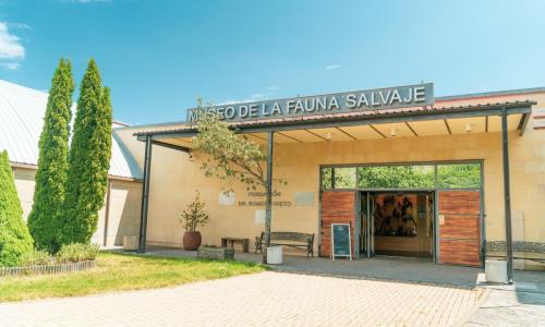 Imagen de Museo de la Fauna Salvaje