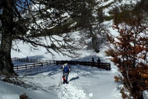 Tobaventura: Nieve1