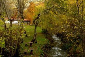 Camping  El Cares2