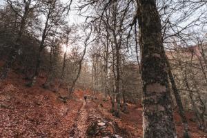 Valle de Sajambre4