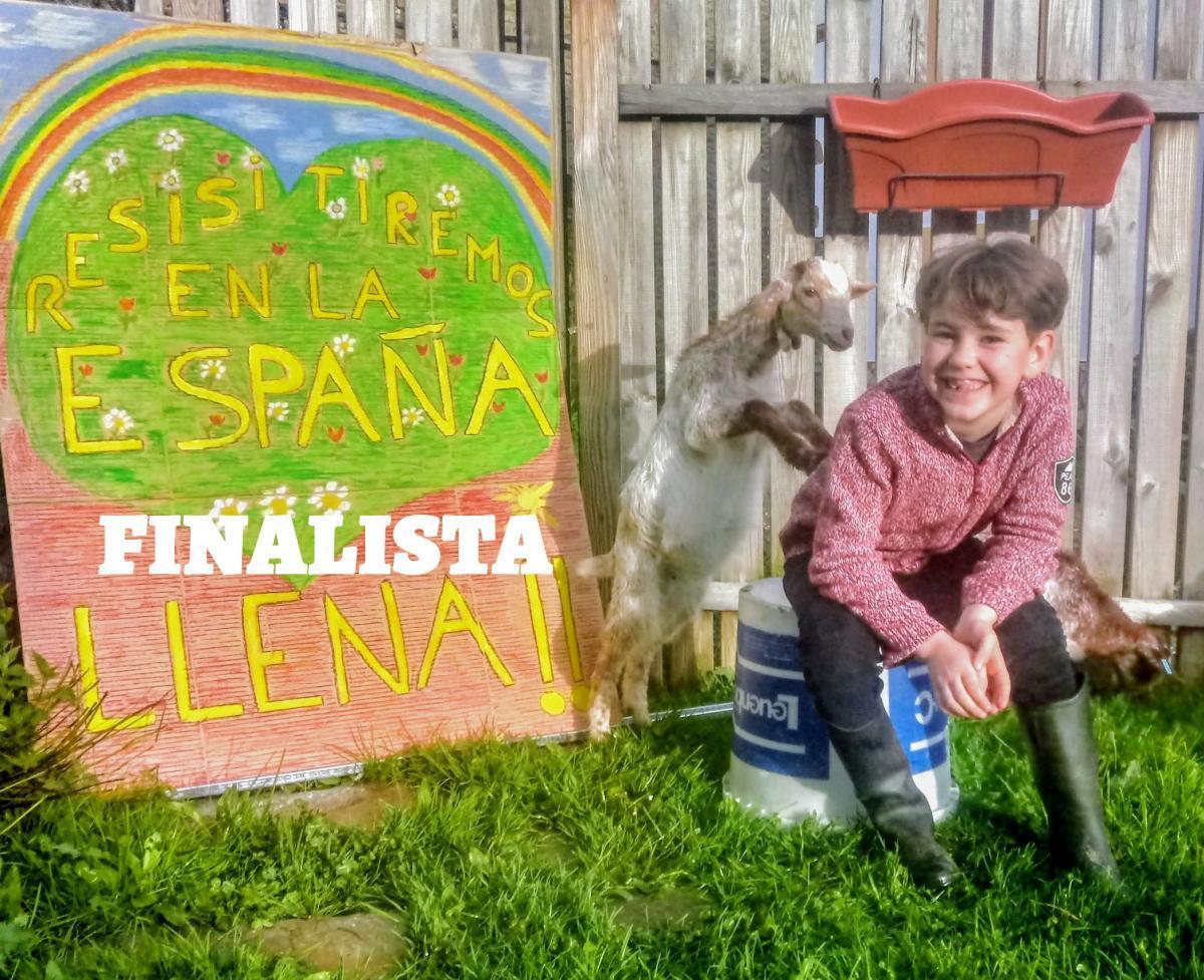 desdemicasa7