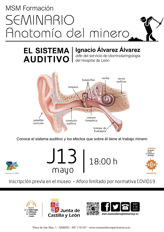 Seminario: Anatomía del Minero0