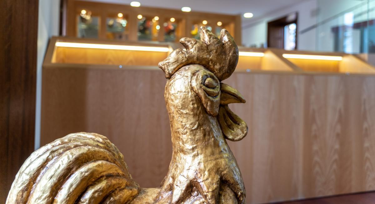 Museo del Gallo1