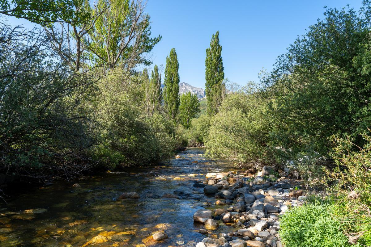 """Puente de """"Los campos de Lugueros""""4"""